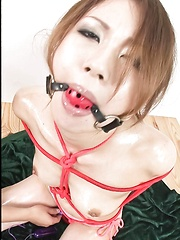 Sara Seori Asian has ball in mouth and body tied in red ropes