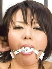 Haruka Uchiyama Asian has ball in mouth and beaver under vibrator